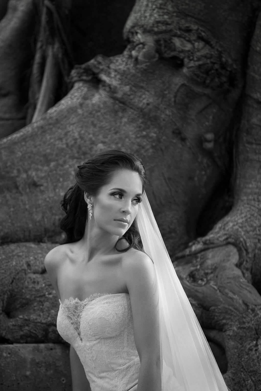Biltmore Wedding Photos